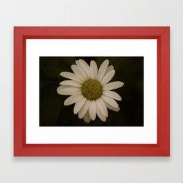 Calm. Framed Art Print