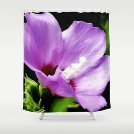 Rose Of Sharon A Summer Bloom Shower Curtain