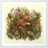 The Cottontail and the Katydid Art Print