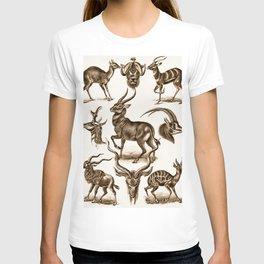 Ernst Haeckel Antilopina Antelope T-shirt