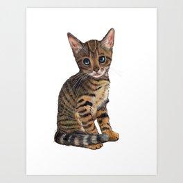 Bengal Kitten, Blue-eyed Kitten, Cute Cat Art Print
