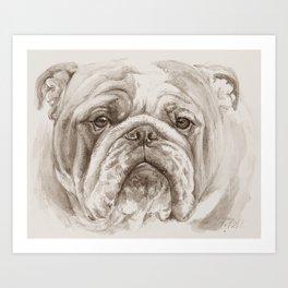 English Bulldog face Black & White painting Art Print