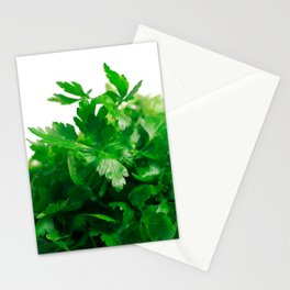 Parsley Stationery Cards