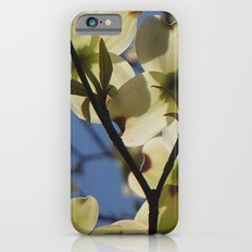 Dogwood Days of Spring Slim Case iPhone 6s
