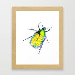 Flower Beetle Framed Art Print
