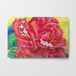 Red Begonia Metal Print