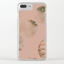 Color Coordinate Clear iPhone Case
