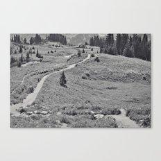 Trail B&W Canvas Print