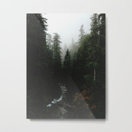 Rainier Creek Metal Print