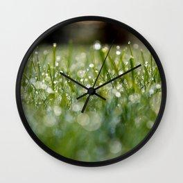 Dew Laden Grass 1 Wall Clock
