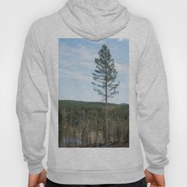 Landscape with a single pine tree standing tall Hoody