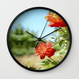Roses in Santa Ynez California Vineyard Wall Clock