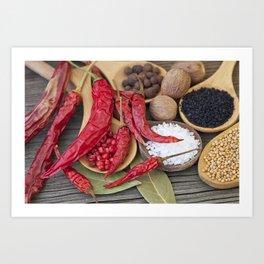 Spicy Kitchen Art Print