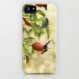 rot1 iPhone Case
