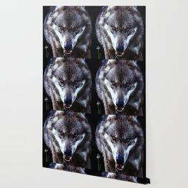Wolf Predator European Wallpaper