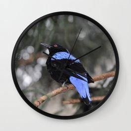 Blue and Black Bird Wall Clock