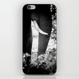 Abstract Elephant II iPhone Skin