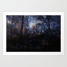 Night dreaming Art Print