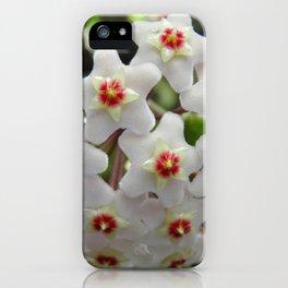 Hoya iPhone Case