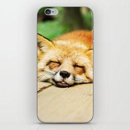 Cutie Foxy Nappy iPhone Skin