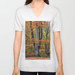 The Beauty of Fall Unisex V-Neck