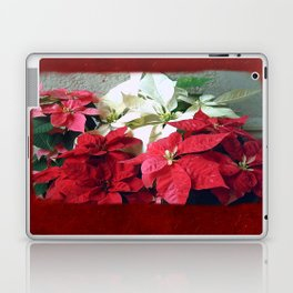 Mixed color Poinsettias 3 Blank P5F0 Laptop & iPad Skin
