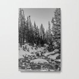 Snowy Fall Metal Print