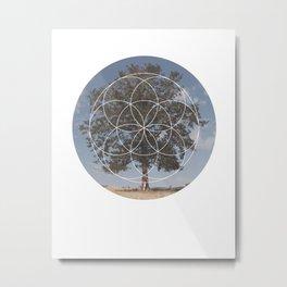 Free Tree Hugs - Geometric Photography Metal Print