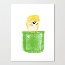 Pocket Unamused Birdie Canvas Print