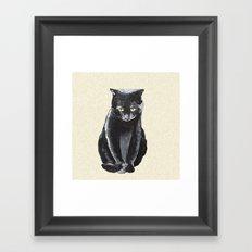 sad cat  Framed Art Print
