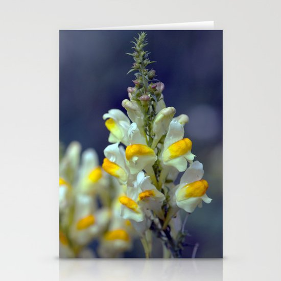 Toadflax flowers 5067 Stationery Cards