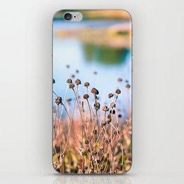 Illinois Fall Seeds iPhone Skin