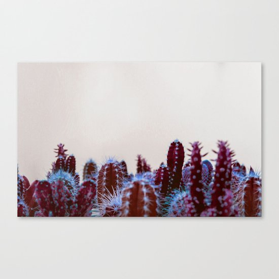 Abstract cactus Canvas Print