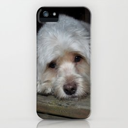 Dog resting on porch iPhone Case
