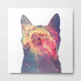 space in cat Metal Print