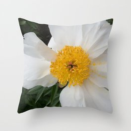White Beauty by Teresa Thompson Throw Pillow