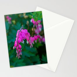 Bleeding Heart Stationery Cards