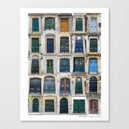 Doors Of Paris Canvas Print