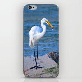 fishing at dusk iPhone Skin