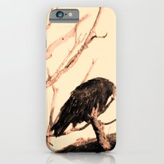Turkey Vultures iPhone 6s Slim Case