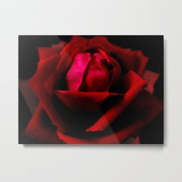 Red Rose Red A589 Metal Print
