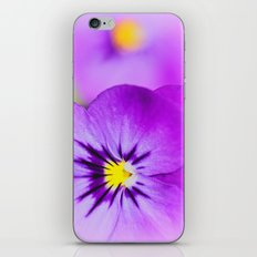 Viola iPhone & iPod Skin