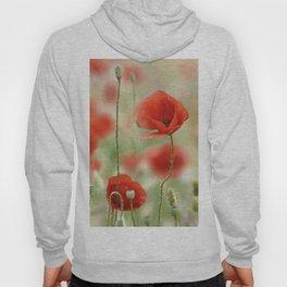 Dream poppies. Wonderful spring Hoody