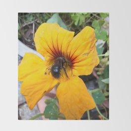 Black bee Throw Blanket