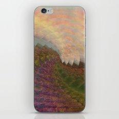 Swirl 2 iPhone & iPod Skin