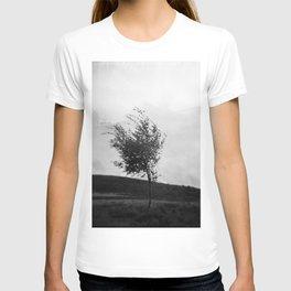 Dartmoor Tree T-shirt