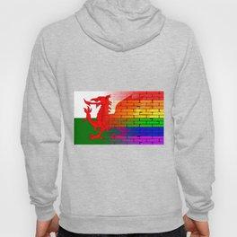 Gay Rainbow Wall Wales Flag Hoody