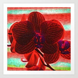 Blood Red Orchid Art Print