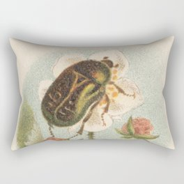 European Rose Chafer Bug Lithograph Rectangular Pillow