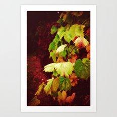 Almost Fall Art Print